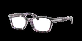 Image 725125356091, color: tortoise